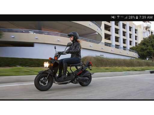 new or used honda ruckus nps50 motorcycle for sale in arkansas