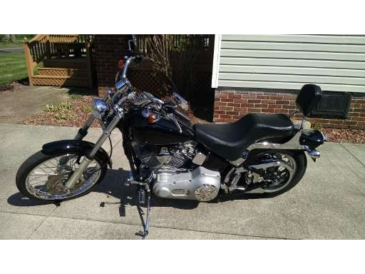 new or used harley--davidson softail standard motorcycle for sale