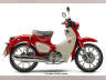 2021 Honda SUPER CUB C125 ABS, motorcycle listing