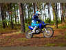 2022 Yamaha TT-R125LE, motorcycle listing